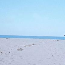 198106_Sicilia_068
